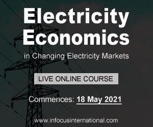 Infocus Electricity Economics